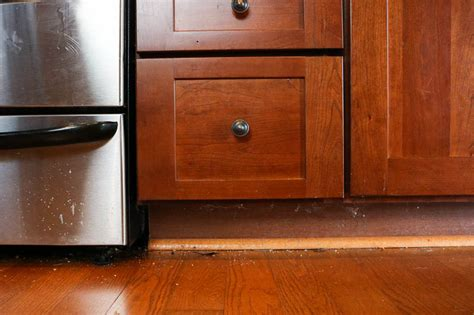 Easy Way To Clean Kitchen Cabinets The And Easy Way To Clean Wood Floors In The Kitchen The Self Cleaning Home Part 5