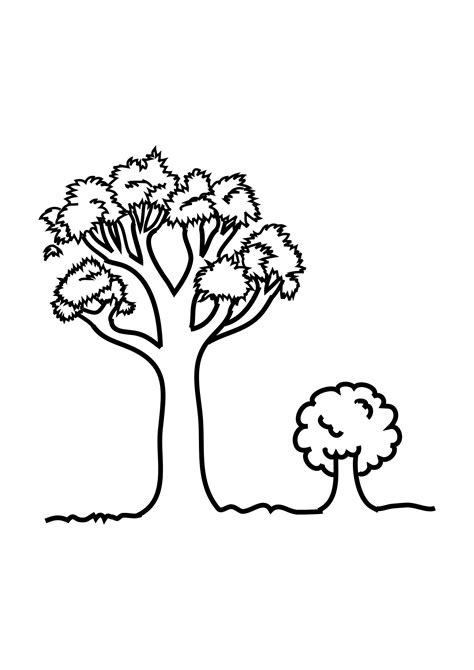 coloring pages of a big tree free printable tree coloring pages for kids