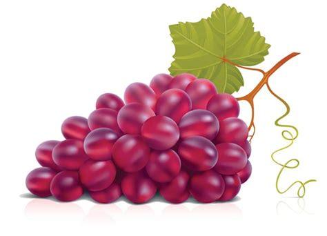 imagenes de uvas naturales alimentos naturales harina de vino potente antioxidante