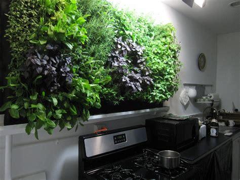 Hydroponic Wall Garden Hydroponic Herb Wall Gardening