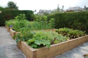 large timber planters create an excellent vegetable garden