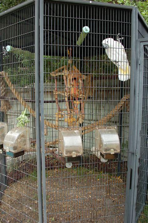 outdoor bird aviaries outdoor bird cages bird toys