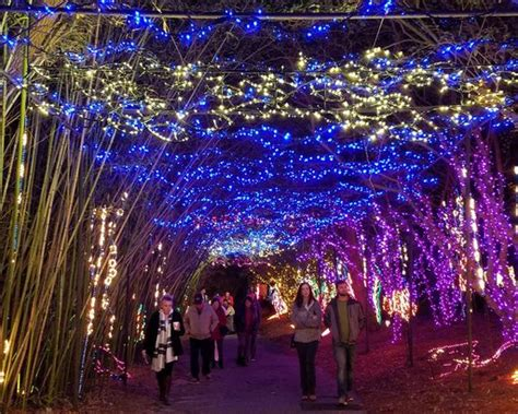 50 best christmas light displays in the u s cheapism