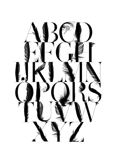 14 best typography feather images on feather
