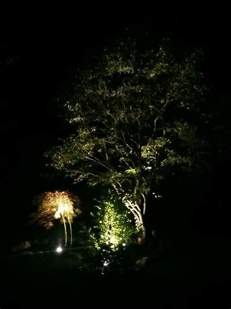 faretti led da giardino faretto da giardino con picchetto a led illuminazione