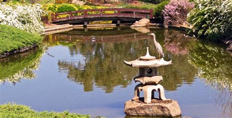 Landscaping Ideas For Small Backyard Japanese Water Gardens Everything Ponds Com
