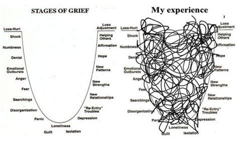 Writing Better Essays David Rogers by Buy Essay Papers Here Stages Of Grief Turnerthesis Web