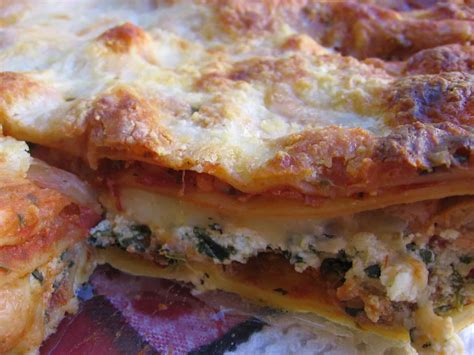lasagna with cottage cheese simple lasagna with cottage cheese recipe