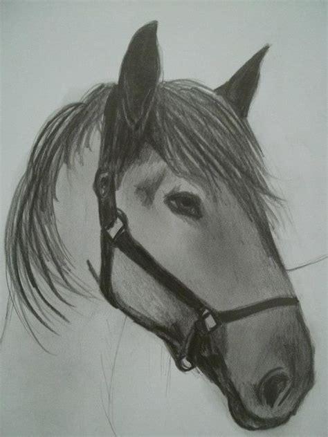 imagenes a lapiz de caballos caballo dibujo a l 225 piz carina malarchia mis dibujos a