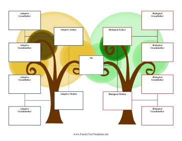 3 family tree template 3 generation adoption family tree template