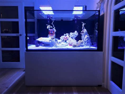 Led Aquarium Lighting by Led Aquarium Lighting Orphek December 2014