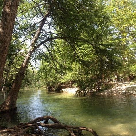 17 best images about leakey tx on smoked