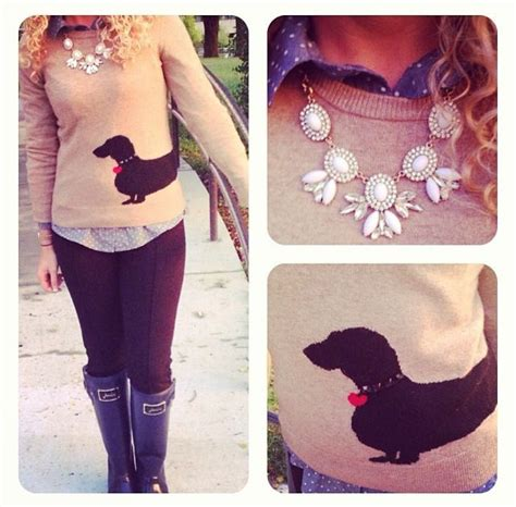 dachshund sweater for 17 best images about mini dachshund on sausage dogs minis and tans