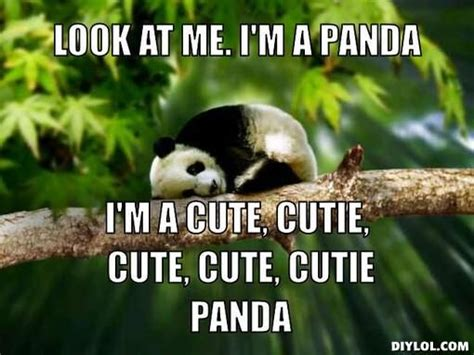 cute red panda memes www imgkid com the image kid has it