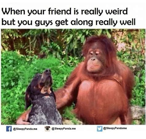Weird Memes - when your friend is really weird but you guys get along