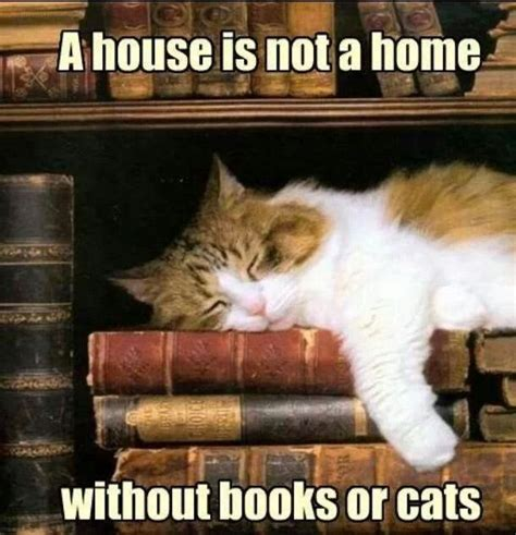 not books a house is not a home without books or cats library