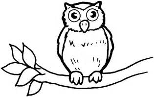 drawings to color owl line drawings az coloring pages