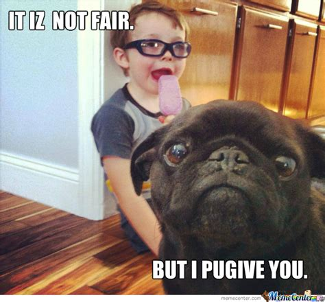 i want a pug i want to pug you by lolalotrix meme center