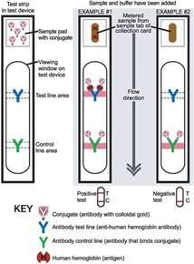 faecal immunochemical tests versus guaiac faecal occult