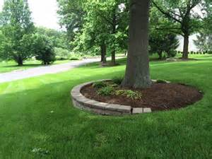 Landscape Edging Around Tree Roots 15 Beautiful Ideas For Decorating The Landscape Around The