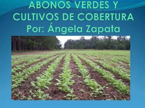 imagenes abonos verdes abonos verdes y cultivos de cobertura