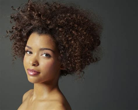 lady afro hair styles afro hairstyles ideas for african american woman s the