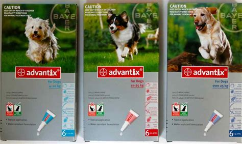 for dogs advantix for dogs 6 pack range from 74 95 parasite dogs cats
