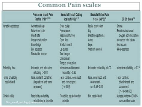 comfort behavior scale comfort behavior scale 28 images 1000 ideas about pain
