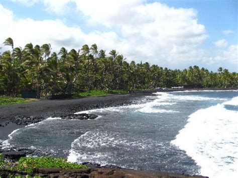 punaluu black sand beach beautiful black sand beach picture of punalu u black