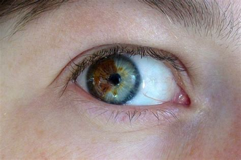 rare blue eye colors most rare eye color in the world pictures to pin on