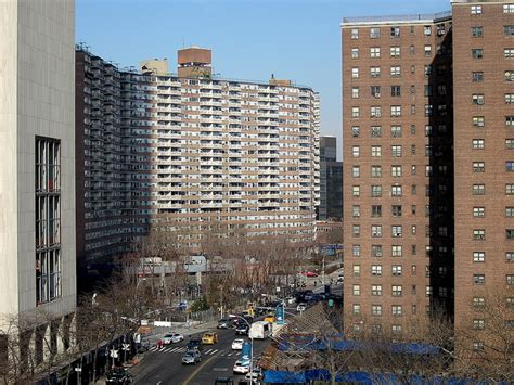 public housing nyc new york city housing authority will lease out open space