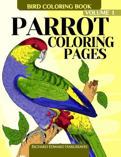 big coloring books for sale parrot coloring pages bird coloring book bird coloring