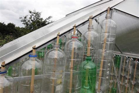 how to build a greenhouse everything you need to get building a bottle greenhouse rhs caign for school