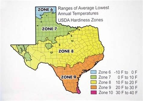 texas zones map neil sperry shares his glossary of gardening te