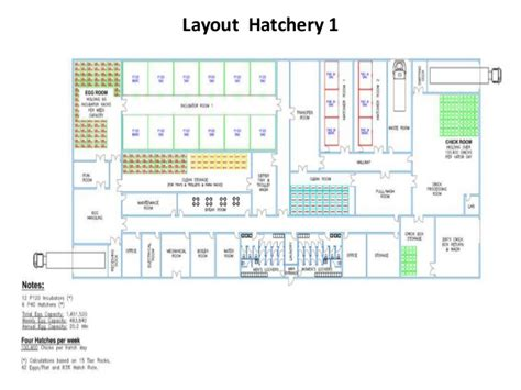 broiler hatchery layout hatchery design