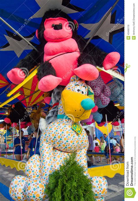 Stuffed Animal Prizes editorial stock image. Image of pink