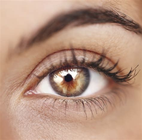 facts about eye color interesting eye color facts utah valley eye