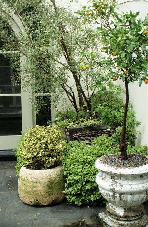 Rock Garden With Potted Plants Large Potted Plants For Patio Potted Trees On The Patio Gardens Flowers Landscaping