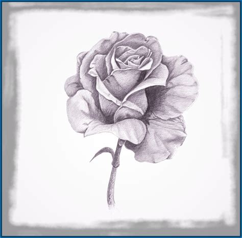 imagenes con lapiz imagenes de rosas dibujadas con lapiz dibujos de amor a