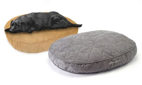 eddie bauer dog bed eddie bauer suede quilt top 36 quot x 30 quot oval pet bed groupon