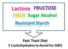 carbohydrates you can t digest 1000 images about fast tract diet for sibo on