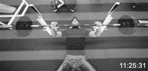 tiger woods bench press 450 tiger woods bench press bench press net