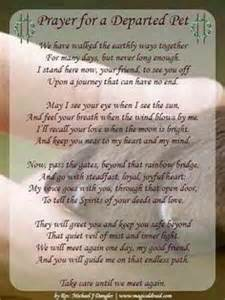 Dog poems on pinterest pet loss miss you and i miss you