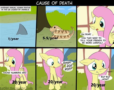 Kids Shower Head Bath Toy cause of death my little pony friendship is magic