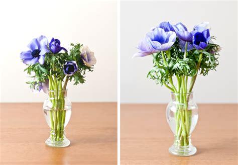 Aspirin In Flower Vases by Living Well 10 Secrets For Extending The Of Cut