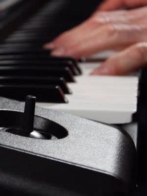New Korg Pa300 61 Key Arranger korg pa300 61 key professional arranger keyboard lazada