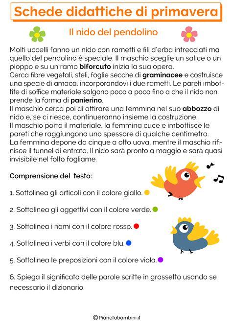 il testo informativo scuola primaria il testo informativo scuola primaria ti55 pineglen