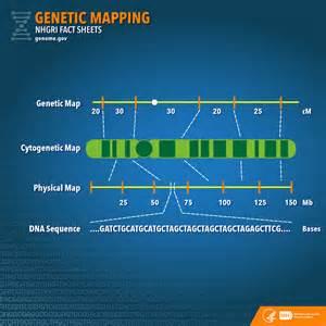 genetic map world map 07