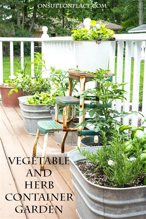 container vegetable gardening tips easy container gardening with vegetables and herbs