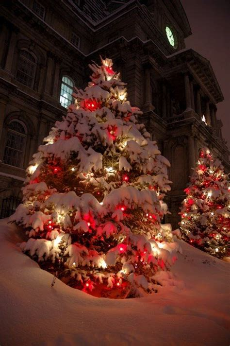 christmas lights and fresh snow christmas pinterest